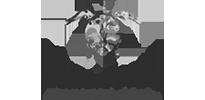 ABCC-turtle-logo2